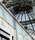 Dior joaillerie_Biennale 2014_grand Palais_Paris