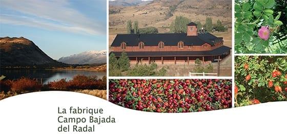 ROSAZUCENA_La_Fabrique_Campo_Bajada_Del_Radal