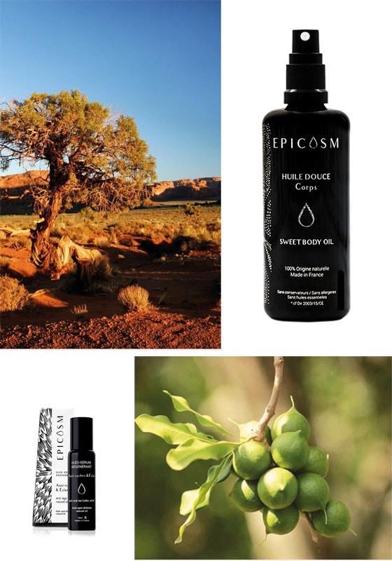Epicosm_Oleo-cosmetiques