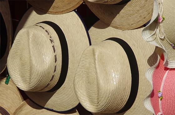 pixabay-hat_Panamas_©_Dezalb_CC0