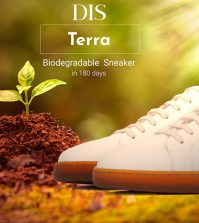 DIS-Basket_Biodegradable
